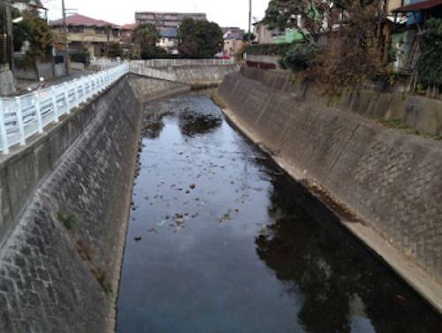 点検や改修を効率的に行うことが求められている河川護岸のイメージ(以下の写真、資料:八千代エンジニヤリング)