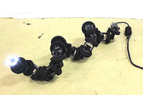 4大学が共同で開発したヘビ型ロボット(以下の資料:京都大学、早稲田大学、岡山大学、金沢大学、科学技術振興機構、内閣府)