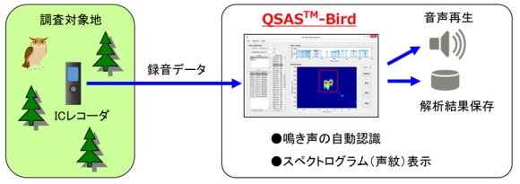 「QSAS-Bird」による野鳥調査のイメージ(以下の資料:富士通九州ネットワークテクノロジーズ)