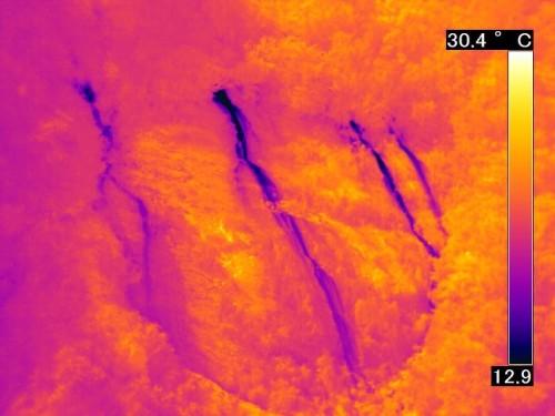 同じ岩盤を赤外線カメラの映像で見ると、斜面から山水がしみ出している場所は周囲より温度が低いので一発で発見できる