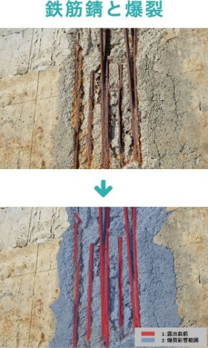 作成した教師データの例。鉄筋錆のあるコンクリート構造物の写真(上)と、さびた鉄筋と爆裂部分を色分け表示した画像がセットになっている(以下の写真、資料:ジャスト)