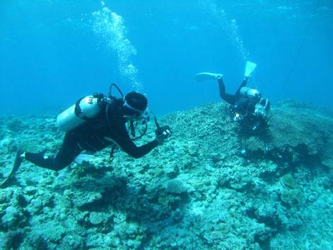 トランシーバーを向け合い、水中で会話する潜水士たち