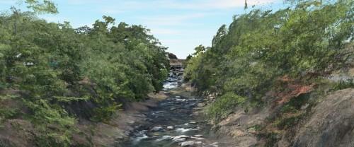 TINデータ上に空撮写真の色を載せて作った渓谷のCIMモデル。樹木下の渓谷までしっかりと3D化されている。樹木はあえてフィルタリングせずに残した